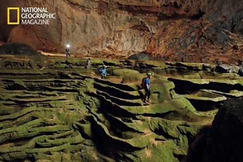 Hệ thực vật phong phú ở Sơn Đoòng được ví như khu vườn địa đàng. Ảnh: National Geographic