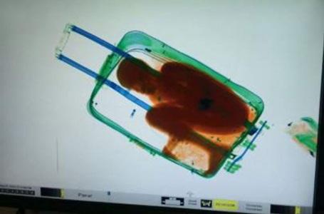 Cậu bé trai nằm gọn trong vali. (Nguồn: chinanews.com)