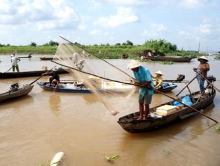 Người dân đang bắt cá gần khu vực vị sạt lở. (Ảnh: Báo Vĩnh Long)
