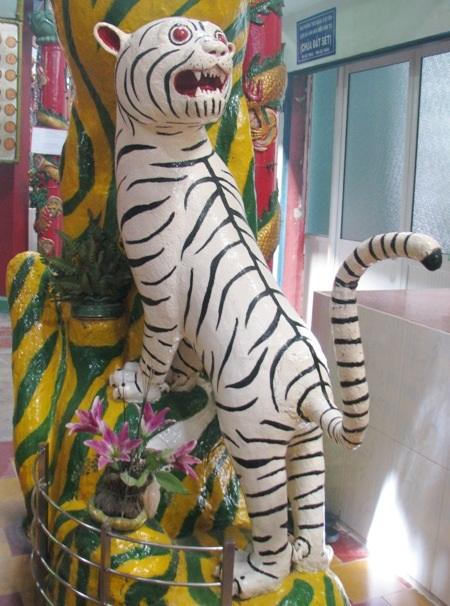 Hổ vằn...