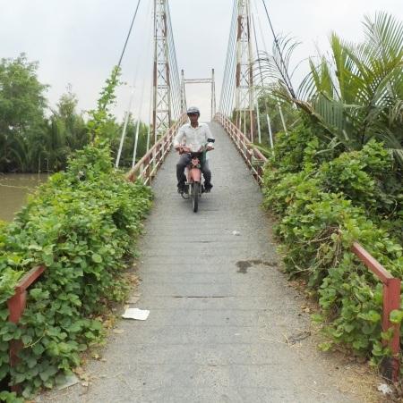 Cỏ dại ngày càng mọc vây kín đường lên xuống cầu gây choáng tầm mắt người lưu thông.