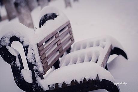 Ghế đá công viên cô đơn dưới tuyết