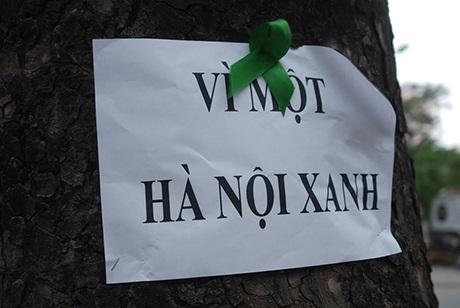Những dòng chữ được nhóm bạn trẻ gắn lên cây kèm một chiếc nơ xanh xinh xắn