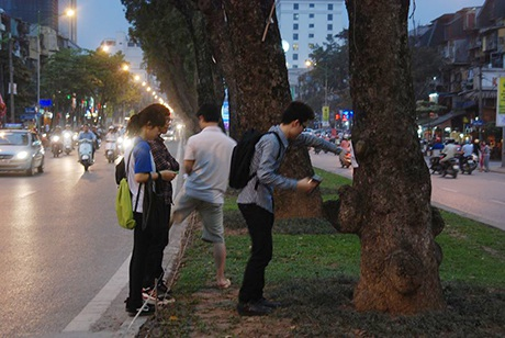 Nữ sinh xinh xắn bên cây xanh mà cô bạn vừa gắn thông điệp bảo vệ