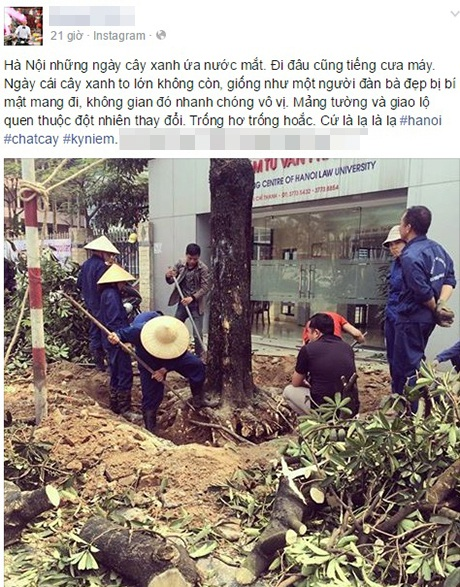 Ảnh: FB Hoàng Trần