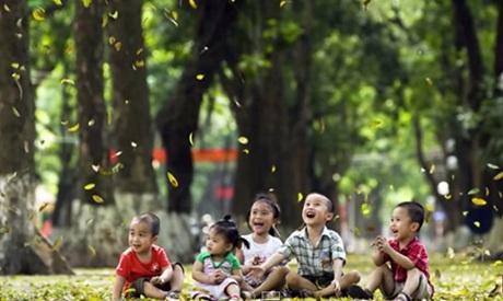 Hình ảnh hàng cây xanh tươi của Hà Nội
