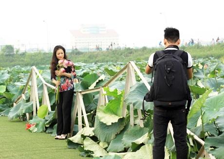 Nhiều lớp sinh viên tại Hà Nội cũng tìm đến đầm sen và thực hiện cho mình bộ ảnh kỷ yếu