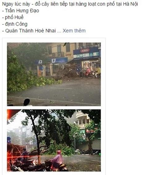 Dân mạng chia sẻ hình ảnh cây đổ trên nhiều tuyến phố Hà Nội