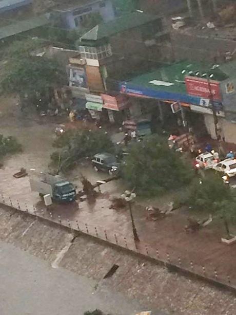 Xe ô tô bị cây đổ chặn hai đầu trên đường Tam Trinh