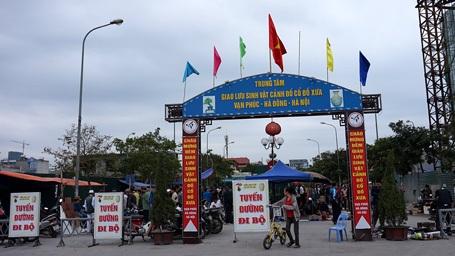 Chợ nằm trên mặt phố Tố Hữu, được tổ chức khá quy củ