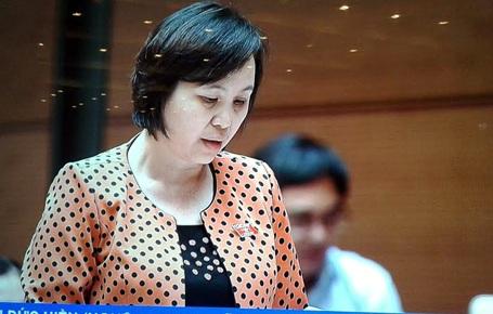 Đại biểu Cao Thị Xuân nêu băn khoăn vì việc ngư dân Việt Nam bị Trung Quốc đập phá, vô nhân đạo