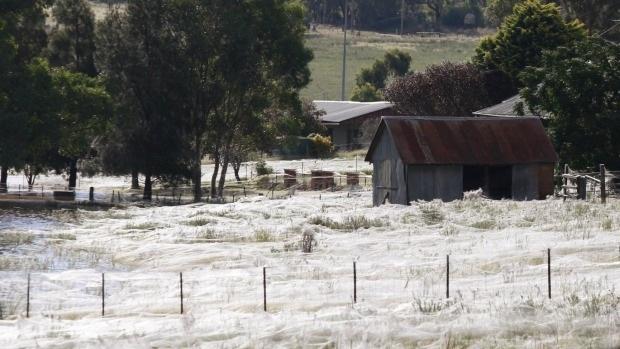 Một ngôi nhà bị mạng nhện vây quanh sau cơn lũ năm 2012.