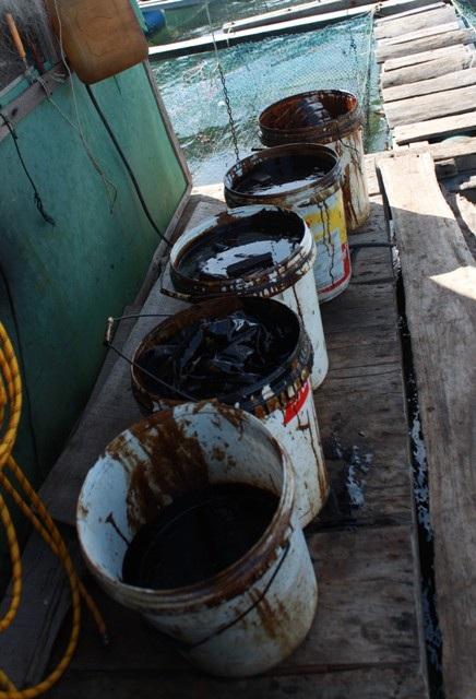 Hàng nghìn lít dầu đen tràn ra biển khiến người nuôi cá lo lắng
