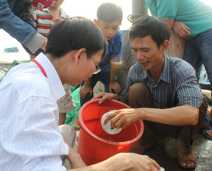 Thả 800 ngàn con tôm sú tại vịnh Xuân Đài (thị xã Sông Cầu)