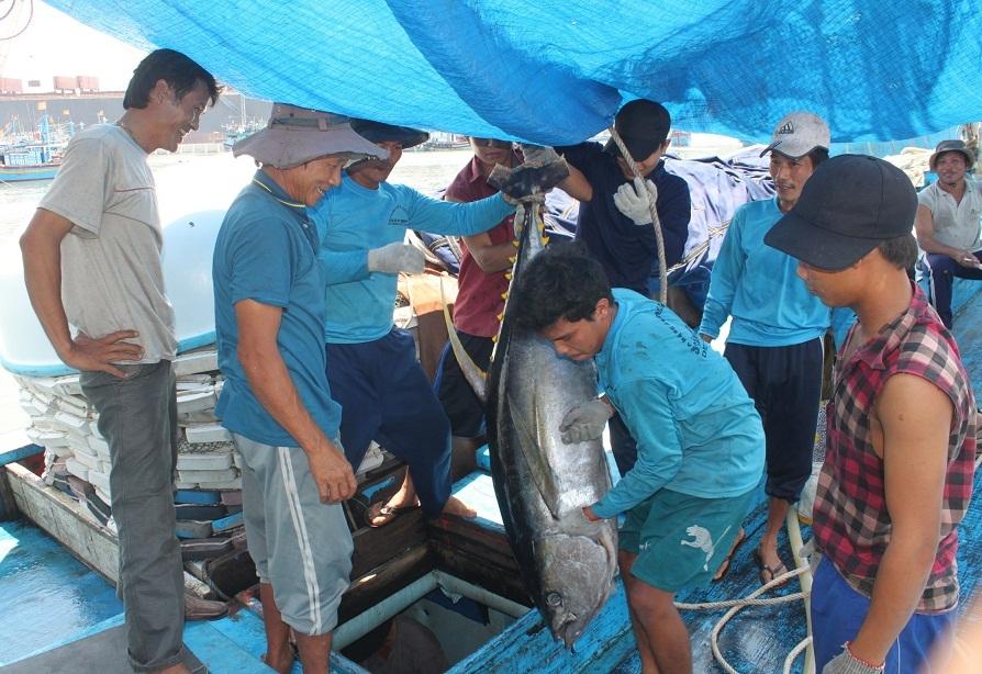 Các thuyền viên trên tàu anh Nguyễn Hứa quyết tâm bám biển, giữ ngư trường