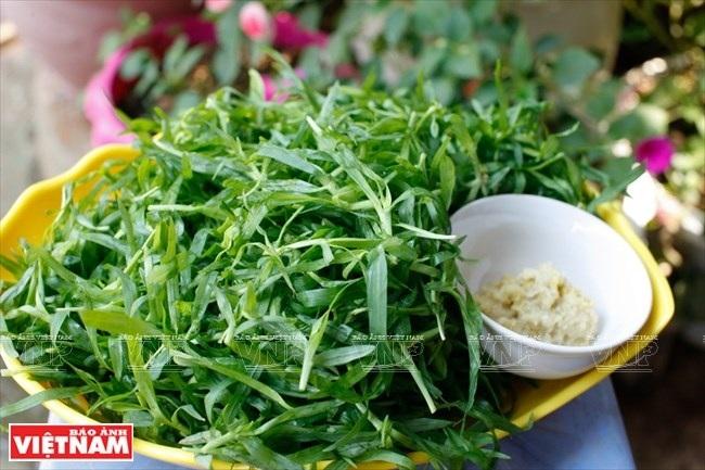 Cỏ miềng trầu một loại rau độc đáo của bà con người Thái ở Quỳnh Nhai. (Ảnh: Việt Cường/Báo Ảnh Việt Nam)