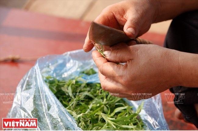 Trước khi chế biến thành món ăn, người Thái lấy dao cắt bỏ phần rể non có màu trắng, để lại phần rể có có màu nâu. (Ảnh: Việt Cường/Báo Ảnh Việt Nam)