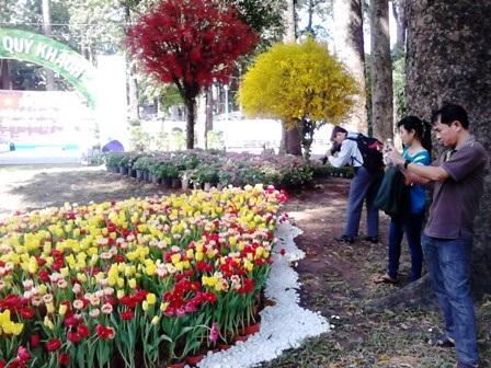Giới trẻchuộnghoa tulip, hoa lan.