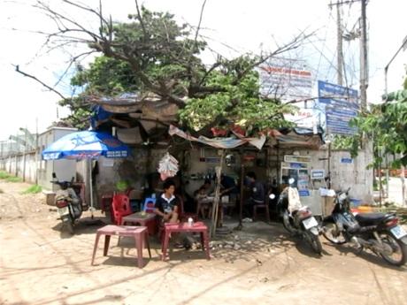 Cả nhà 3 người trú tạm dưới túp lều tạm bợ dựng từ cành cây,vải bạt
