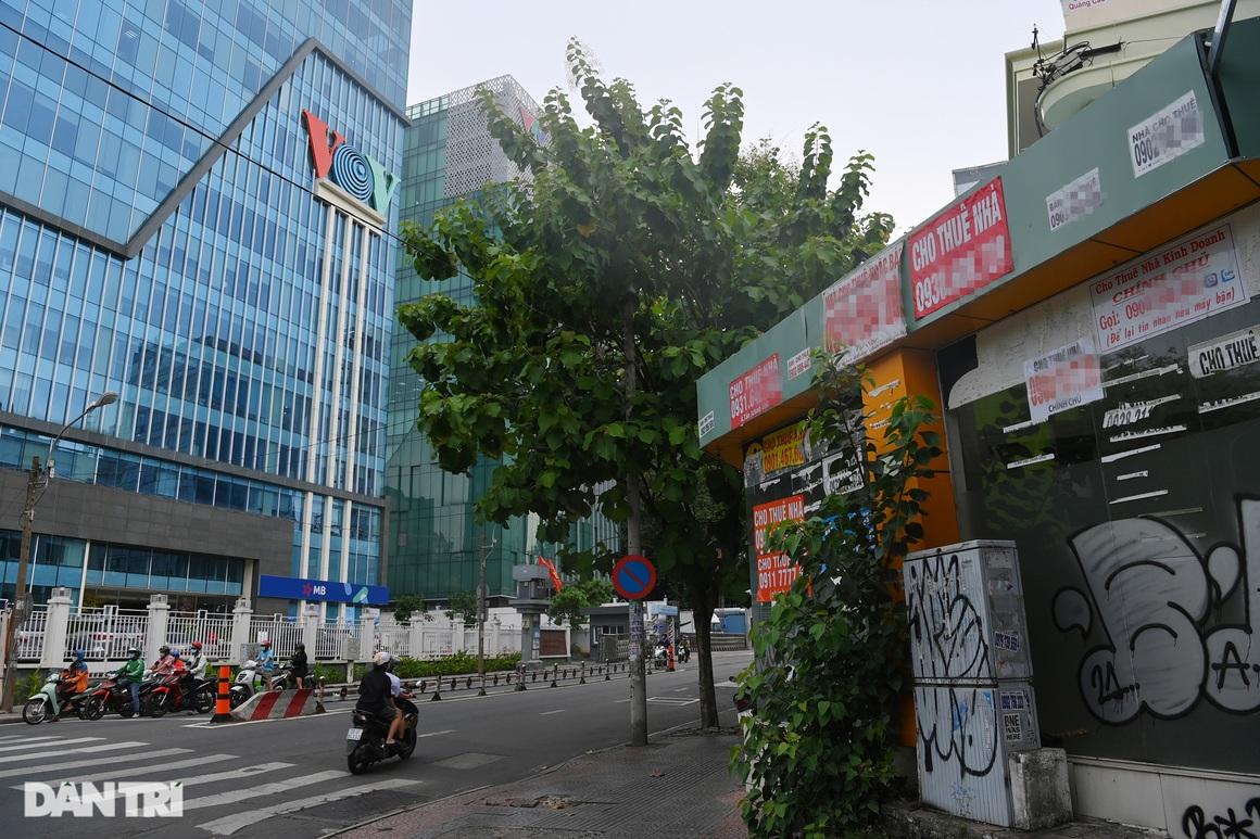 Tràn ngập biển cho thuê, bán nhà trên các tuyến phố trung tâm Sài Gòn - 23