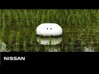 """Người Nhật sáng chế robot """"vịt"""", tạo cuộc cách mạng trong ngành công nghiệp lúa nước"""