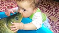 Góc thư giãn: Lần đầu bé gặp cá
