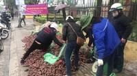 Người dân Hà Nội tham gia giải cứu khoai lang