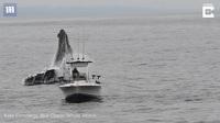 Thú vị khoảnh khắc cá voi lưng gù nhảy lên khỏi mặt nước ngay sát bên thuyền của ngư dân