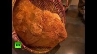 Phát hiện 5 quả trứng khủng long hóa thạch niên đại 70 triệu năm