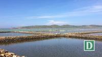 Phú Yên: Ra quân giải tỏa nuôi thủy sản trái phép trên danh thắng Quốc gia đầm Ô Loan