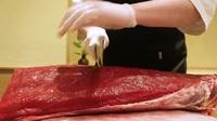 """200 triệu/kg: Tại sao cá ngừ vây xanh lại có mức giá """"điên rồ"""" đến vậy?"""