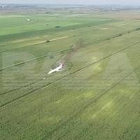 Đâm phải đàn chim, máy bay Nga chở 233 người lê bụng xuống cánh đồng ngô