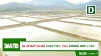 Cận cảnh khu đất doanh nghiệp đã trao tiền nhưng không được tỉnh Hà Tĩnh bàn giao