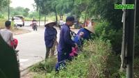 Hà Nội: Phát quang bụi rậm ở khu chung cư từng xuất hiện nhiều rắn độc
