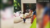 Cristiano Ronaldo chơi bóng với con trai nhỏ