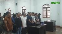Xét xử trùm Phượng râu và 23 bị cáo trong đường dây gỗ lậu khủng