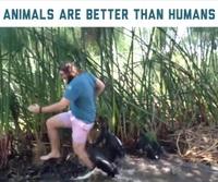 """Chết cười với khoảnh khắc con người khốn đốn khi động vật bỗng trở nên """"bẩn tính""""!"""