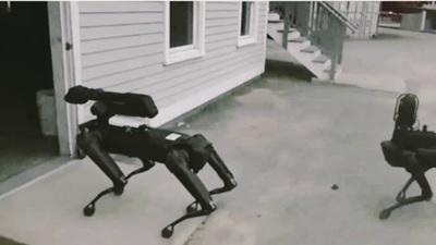 Cảnh sát Mỹ sử dụng chó robot nhằm thay thế chó nghiệp vụ