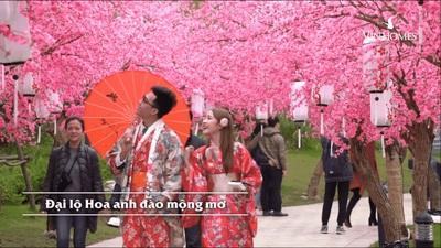 """Lễ hội hoa """"Bonsai Trường Thọ & Tuần lễ văn hóa Việt - Nhật"""" tại Vinhomes Smart City"""