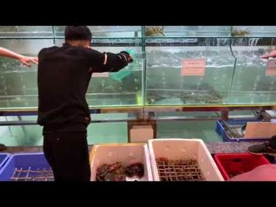 Các thực khách Hà Nội đến chọn mua hải sản tại cơ sở 728 Trương Định