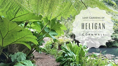 Vẻ đẹp của vườn bách thảo Lost Gardens of Heligan ở hạt Cornwall, Anh