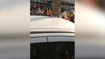 Video cây đâm xuyên nóc xe ô tô khiến mọi người xôn xao