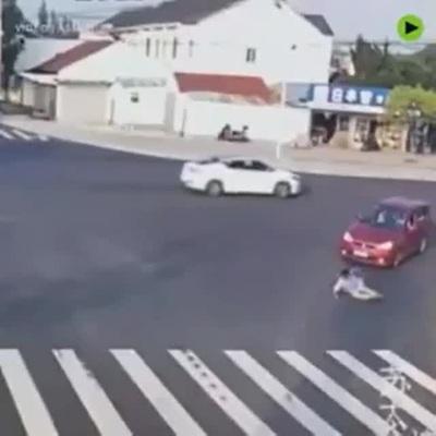 Clip cho thấy đôi khi con người còn không tuân thủ luật giao thông bằng... loài vật