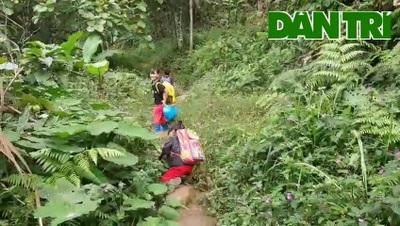 Các em học sinh Nam Trà My băng rừng, lội suối đến trường