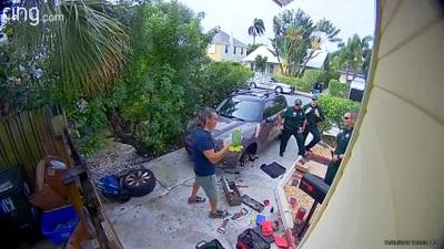 Con vẹt phát ra tiếng kêu cứu thảm thiết khiến cảnh sát phải tới nhà