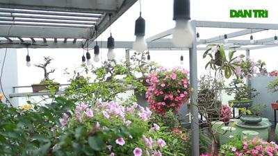 Choáng ngợp căn penthouses với sân vườn ngập cây xanh của doanh nhân Hà Nội