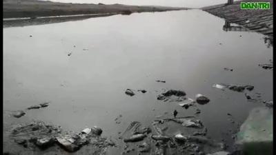 Nước thải sinh hoạt xả thẳng ra bãi biển ở Hà Tĩnh