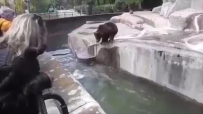 Say xỉn, người đàn ông đánh nhau với gấu