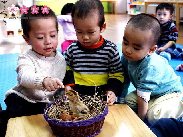 Nuôi dưỡng niềm hạnh phúc trong trẻ, dễ hay khó - 4