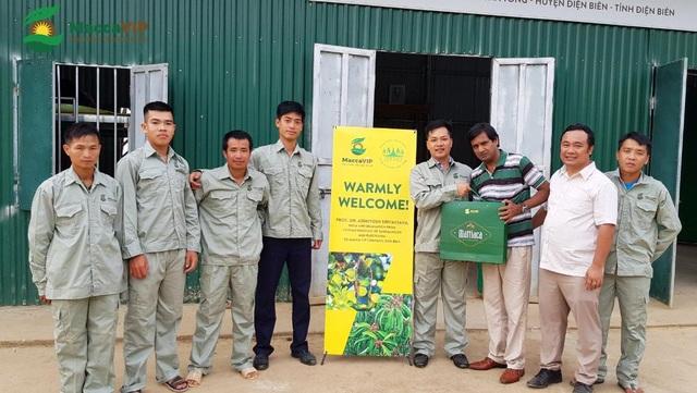 Bước đi đột phá của sản phẩm hạt Mắc ca Việt Nam cao cấp - Ảnh 2.